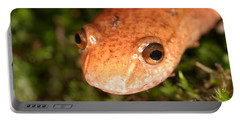 Spring Salamander Portable Battery Charger by Ted Kinsman