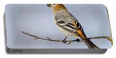 Female Pine Grosbeak Portable Battery Charger