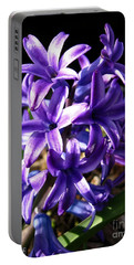 Portable Battery Charger featuring the photograph Hyacinth Named Peter Stuyvesant by J McCombie