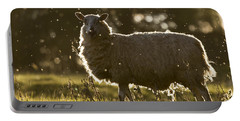 The Lamb  Portable Battery Charger