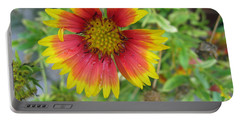 Portable Battery Charger featuring the photograph A Beautiful Blanket Flower by Ashish Agarwal