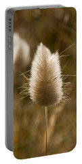 A Beautiful Seed Pod With Beautiful Sun Reflection Portable Battery Charger