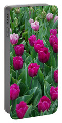 A Field Of Tulips Series 2 Portable Battery Charger by Eva Kaufman
