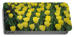 A Field Of Yellow Tulips In Spring Portable Battery Charger by Eva Kaufman