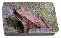 Portable Battery Charger featuring the photograph A Friendly Frog by Chalet Roome-Rigdon