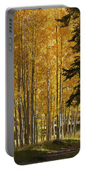 A Golden Trail Portable Battery Charger