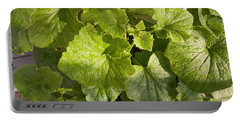A Green Leafy Vegetable Plant After Watering In Bright Sunrise Portable Battery Charger by Ashish Agarwal