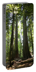 A Green World Portable Battery Charger