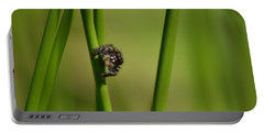 Portable Battery Charger featuring the photograph A Jumper In The Grass by JD Grimes