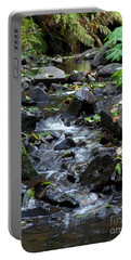 Portable Battery Charger featuring the photograph A Peaceful Stream by Chalet Roome-Rigdon