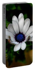 African Daisy Portable Battery Charger by Lynne Jenkins