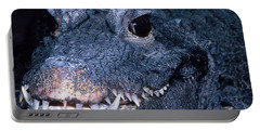 African Dwarf Crocodile Portable Battery Charger by Dante Fenolio
