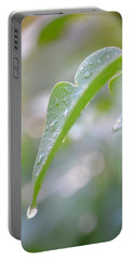 Portable Battery Charger featuring the photograph After The Rain by JD Grimes
