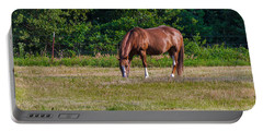 Alone In The Pasture Portable Battery Charger by Doug Long