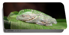 Amazon Leaf Frog Portable Battery Charger
