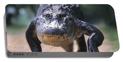American Alligator Walking On A Trail Portable Battery Charger