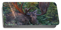 Portable Battery Charger featuring the photograph An Eye On You by Doug Lloyd