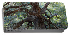 Angel Oak - Dont Climb Or Carve On The Tree Portable Battery Charger