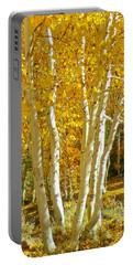 Aspen Claws Portable Battery Charger