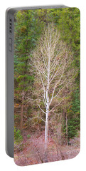 Aspen Tree Forest Road 249 Portable Battery Charger