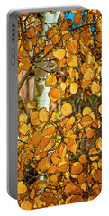 Aspens Gold Portable Battery Charger