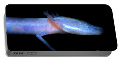 Austin Blind Salamander Portable Battery Charger