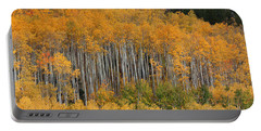 Portable Battery Charger featuring the photograph Autumn Curtain by Jim Garrison