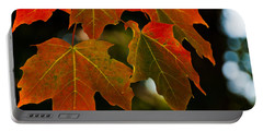 Portable Battery Charger featuring the photograph Autumn Glory by Cheryl Baxter