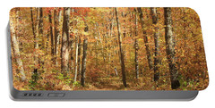 Portable Battery Charger featuring the photograph Autumn In Minnesota by Penny Meyers