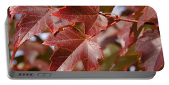 Autumn In My Back Yard Portable Battery Charger by Mick Anderson