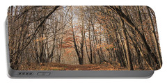 Portable Battery Charger featuring the photograph Autumn In The Woods by Penny Meyers