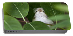 Portable Battery Charger featuring the photograph Baby Bird Peeping In The Bushes by Jeannette Hunt