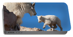Portable Battery Charger featuring the photograph Baby Steps by Jim Garrison