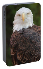 Portable Battery Charger featuring the photograph Bald Eagle by Coby Cooper