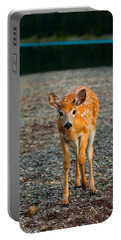 Bambi Portable Battery Charger