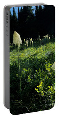Portable Battery Charger featuring the photograph Bear-grass II by Sharon Elliott