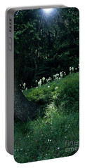 Portable Battery Charger featuring the photograph Bear-grass Ridge II by Sharon Elliott