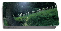 Portable Battery Charger featuring the photograph Bear-grass Ridge by Sharon Elliott