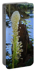 beargrass and Stump Portable Battery Charger
