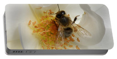Bee In A White Rose Portable Battery Charger by Lainie Wrightson