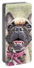 Portable Battery Charger featuring the photograph Best Friend by Jeannette Hunt
