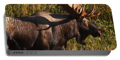 Portable Battery Charger featuring the photograph Big Bull by Doug Lloyd