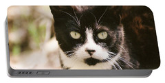 Black And White Feral Cat Portable Battery Charger by Chriss Pagani