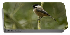 Black-capped Chickadee With Branch Bokeh Portable Battery Charger