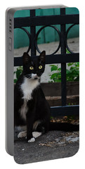 Black Cat On Black Background Portable Battery Charger