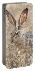 Portable Battery Charger featuring the photograph Black-tailed Hare by Doug Herr