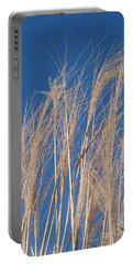 Portable Battery Charger featuring the photograph Blowing In The Wind by Barbara McMahon