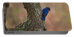 Blue Bird 2 Portable Battery Charger