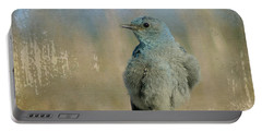 Blue Bird Portable Battery Charger
