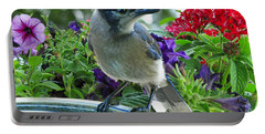 Portable Battery Charger featuring the photograph Blue Jay At Water by Debbie Portwood